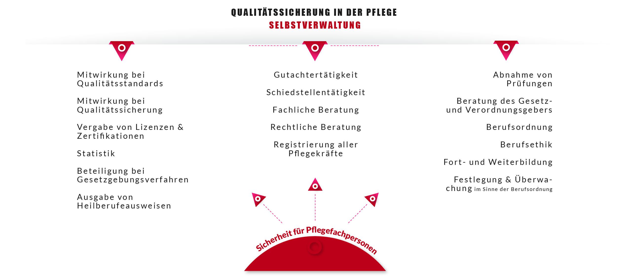 Darstellung der Aufgaben der Berliner Pflegekammer